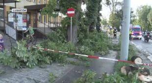 Połamane drzewa w Lubartowie